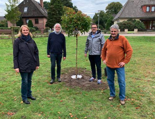 """SPD Hagen im Bremischen pflanzt """"Demokratiebaum"""""""