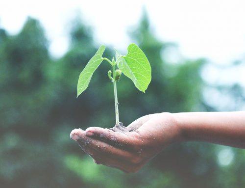 Wirksamer Natur- und Umweltschutz